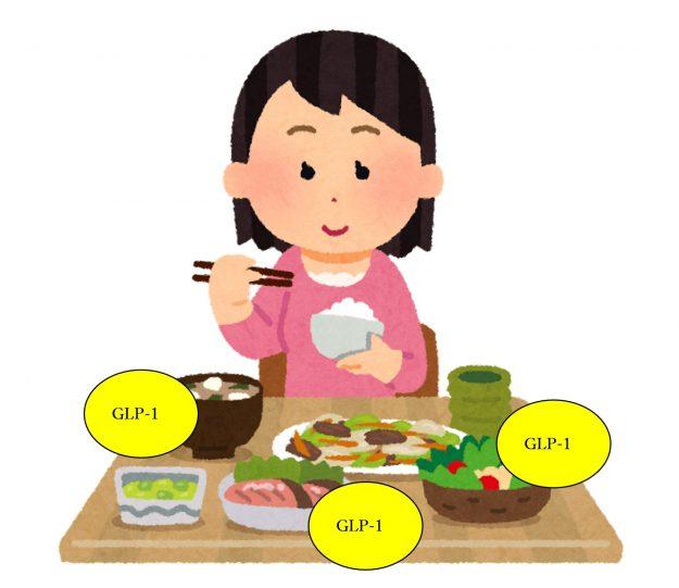 glp 1 ダイエット 体験者 口コミ 食事をしている女性のイラスト