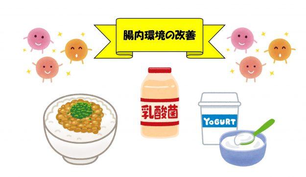 glp 1 ダイエット 体験者 口コミ 納豆ご飯とヤクルトとヨーグルトのイラスト