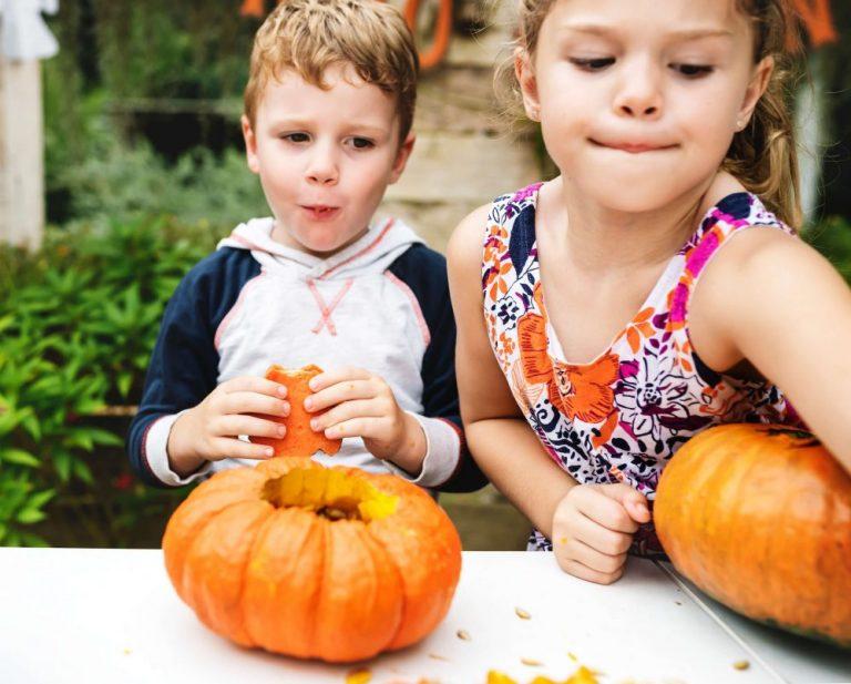 子供2人とかぼちゃ