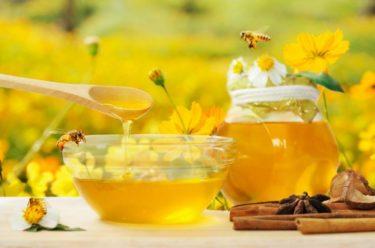 はちみつダイエットの失敗談!逆に太ることもあり得るのは蜂蜜の種類?量?痩せた口コミもご紹介