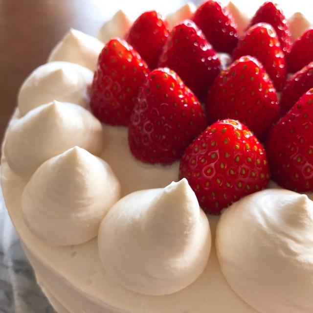 ショ糖には脂質がつきものの見本ショートケーキ