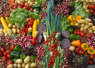 【失敗注意】生酵素ダイエットで逆に太る5つの原因を完全解説!