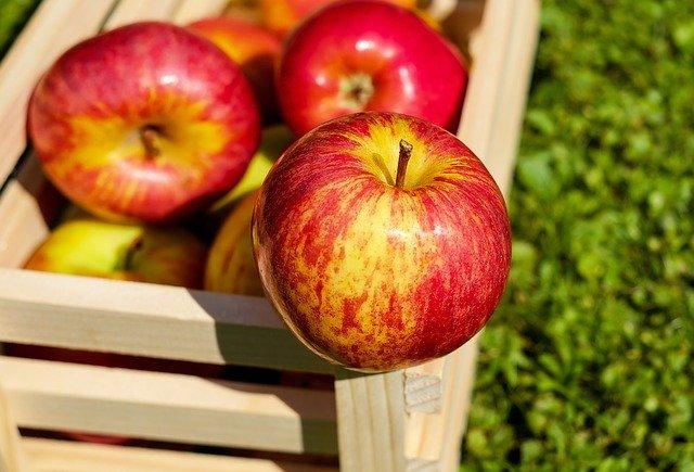 りんごダイエットで失敗が不安?誰でも成功する3つの方法を大公開!