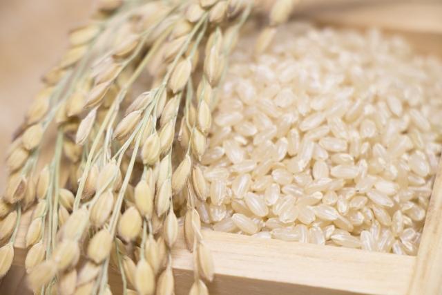 おやつに玄米を活用しよう!おすすめ商品3選