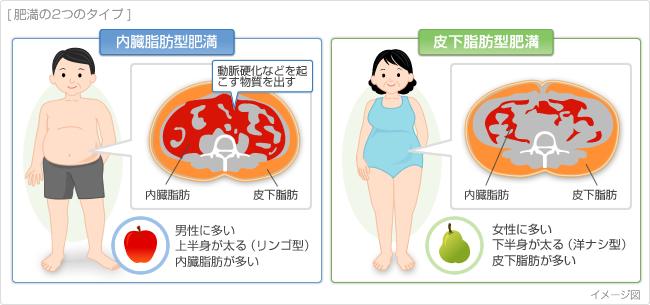 肥満とは?